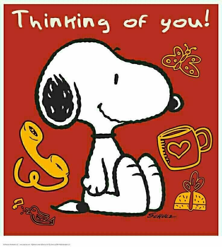 For Uncle Joe❤ Back to Sweetie | Funny Sayings | Snoopy, Snoopy