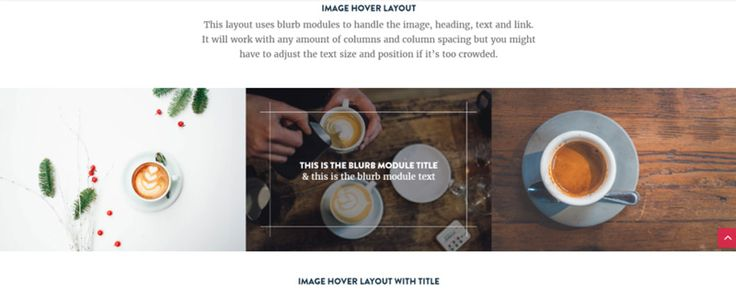 10 Free Divi Layouts to Download Today