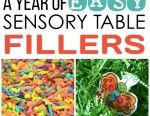 A Year Of Easy Sensory Table Fillers