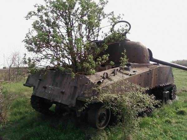 ABANDONED TANK - TREE GROWING THRU IT!