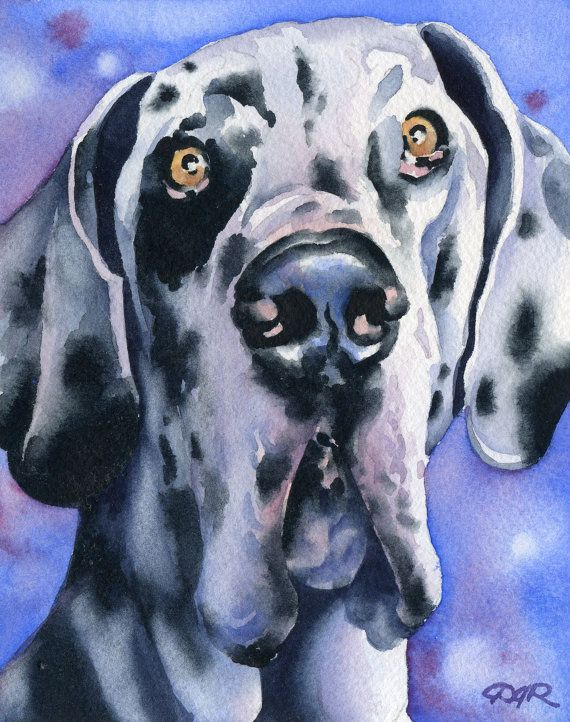 HARLEQUIN GREAT DANE Dog Signed Art Print by by k9artgallery, $12.50
