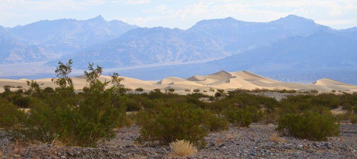 Mesquite Flat Sand Dunes, Death Valley. I kølige  30 grader en tidlig morgenstund - inden sol og varme...
