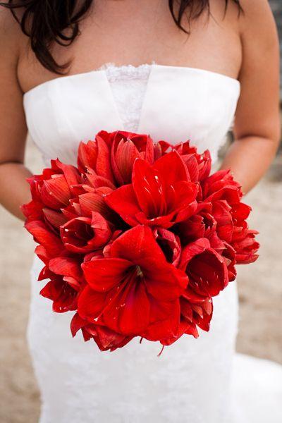 629 best red flower arrangements bouquets images on for Bouquet amaryllis