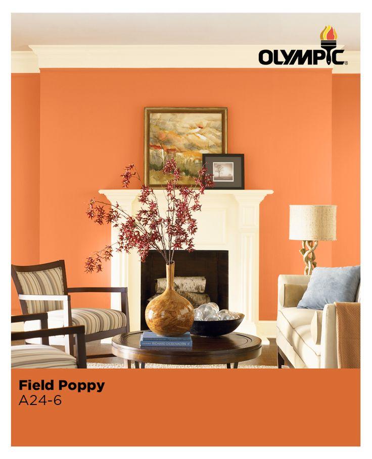 A Vivid Orange Like Field Poppy Exudes Energy And Stimulates Activity Making It