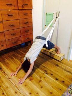 子供 自宅練習 犬のポーズ  Home practice of children