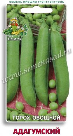 Горох овощной Адагумский Среднеспелый лущильный сорт. Период от появления всходов до начала сбоpa урожая 68-73 дней. Высота стебля 70-80 см. На растении 8-14 бобов. Бобы прямые, с заостренной вершиной, длиной до 7 см, темно-зеленые.  В бобе 6-9 зерен темно-зеленой окраски. Вкусовые качества отличные. Ценность сорта: дружное плодоношение, пригодность для одноразовой механизированной уборки на зеленый горошек. Используют в свежем виде и для консервирования.