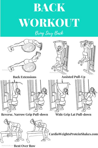 Back Day Workout for a Toned, Sexy Back