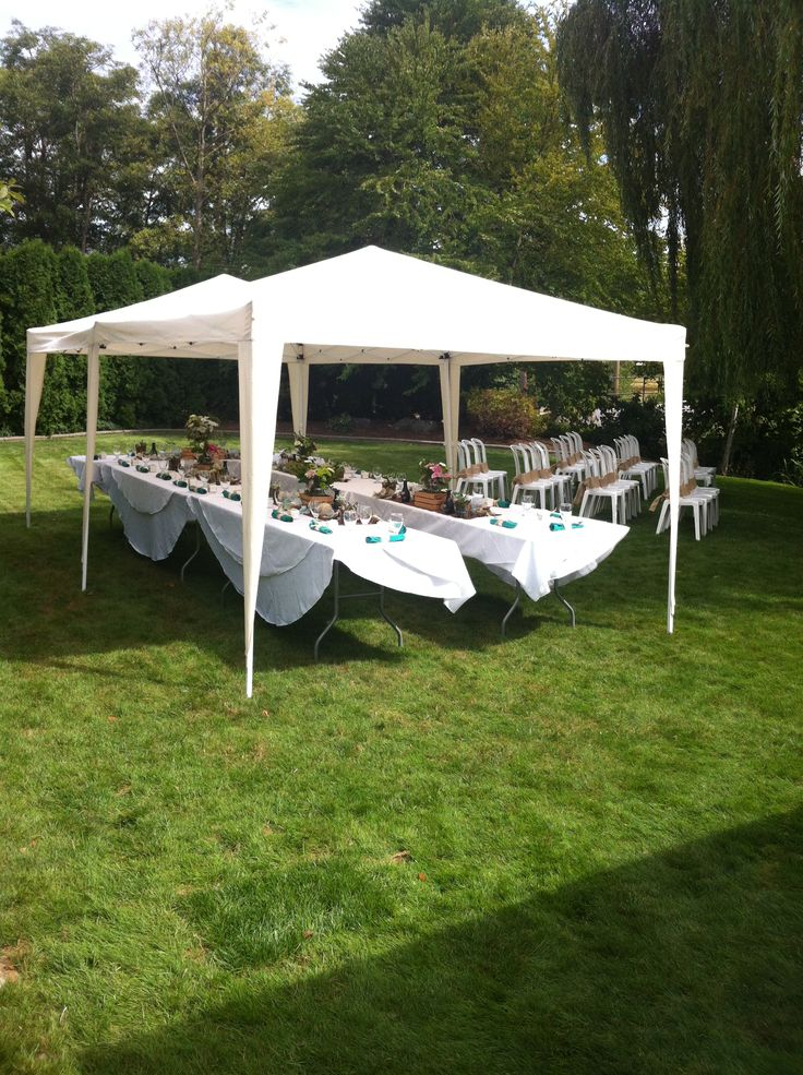 tent set-up for small backyard wedding | Small backyard ...