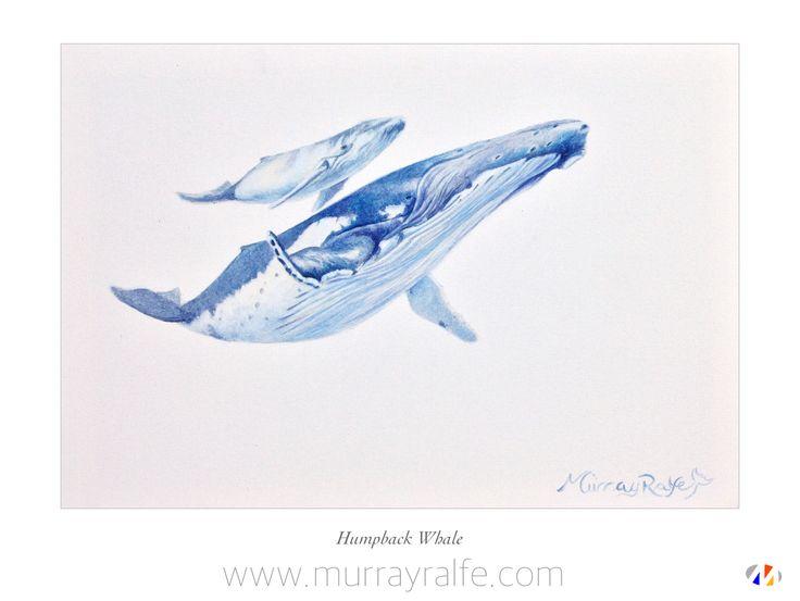 Humpback Whale and Calf Oil on canvas  Murray Ralfe  www.murrayralfe.com