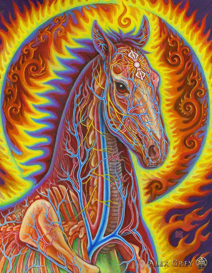 Alex Grey - Vajra Horse