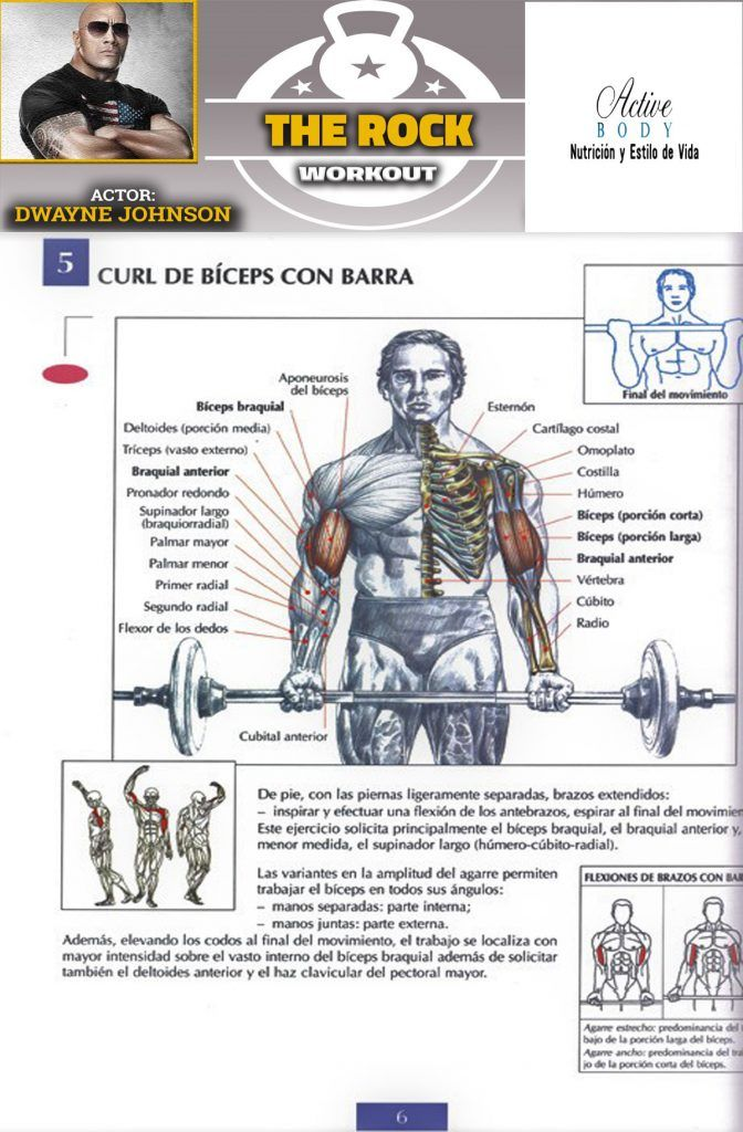 Curl De Bíceps Con Barra Biceps Workout Gym Workout Tips Bodybuilding Workouts