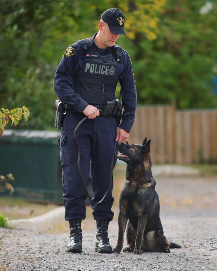 #OPP canine handlers form a close bond with their service dogs. These amazing dogs work hard to keep our communities safe! #canine #police #GermanShepherd #shepherd #dog #K9 #dog #policing #proud #officer #Ontario #Canada #policedog