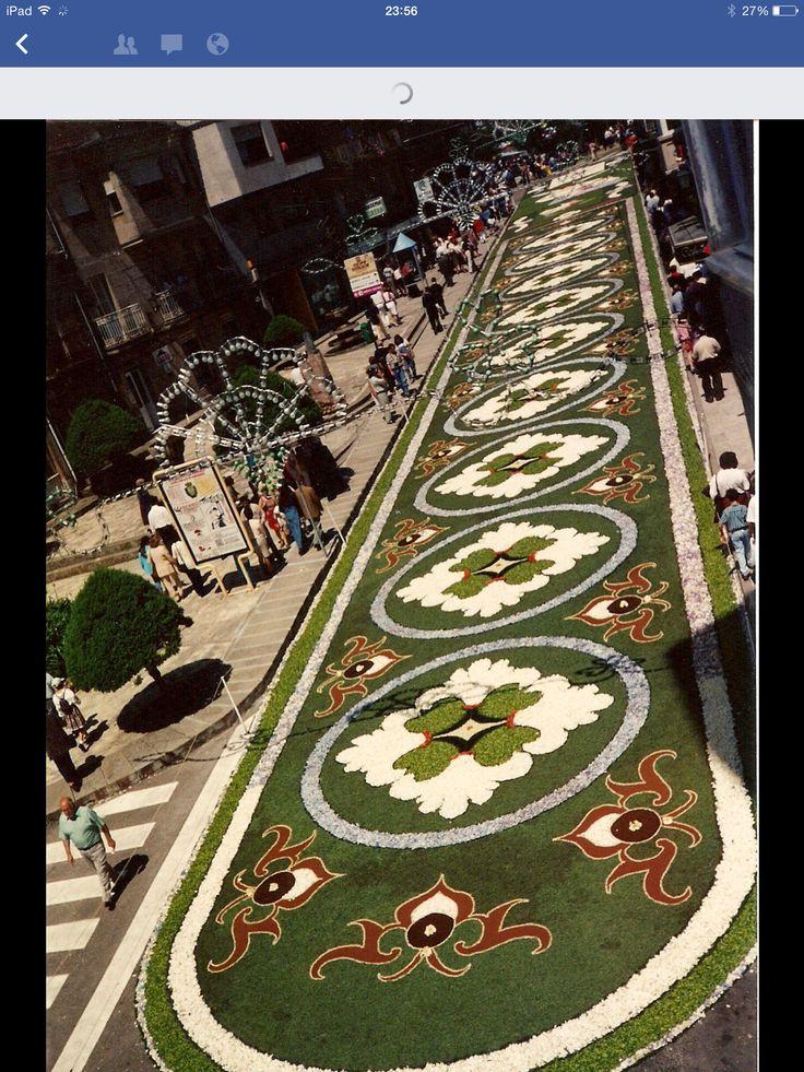 115 mejores im genes sobre alfombras corpus en pinterest antigua guatemala alfombras y camino - Alfombras portugal ...