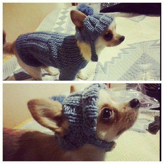 clothing for dog.Dog sweater.knitting for pets.handmade sweater and hat. Knit Dog Clothing by RakushaShop