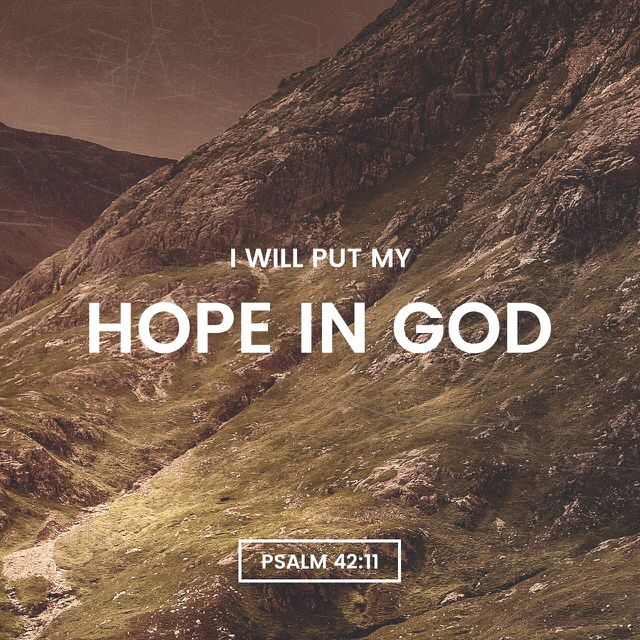 11 Why am I so sad? Why am I so upset? I should put my hope in God and keep praising him, my Savior and my God. (Psalms 42:11 NCV)