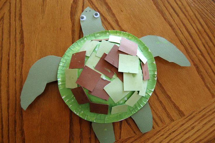 Sea turtle craft crafting ocean life and preschool for Sea life arts and crafts