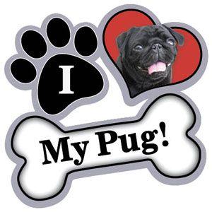 Paw/ Heart/ Bone black pug magnet! I HAVE THIS! I got it from milwaukee pug fest! :D:D I have the fawn one too!: Pug Merchandise, Benefit Pugs, Pug Luv, Pug Magnet, Pugjava Com, Luv Pugs, Pug Stuff, Things Pug