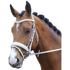 hoofdstel paard