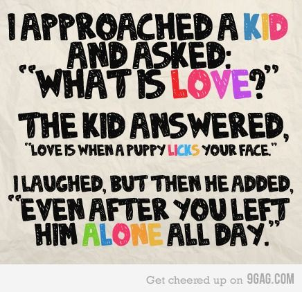 {what is love}: Love I, Dogs, True Love, What Is Love, So True, Puppies Love, Smart Kids, Love Quotes, Animal
