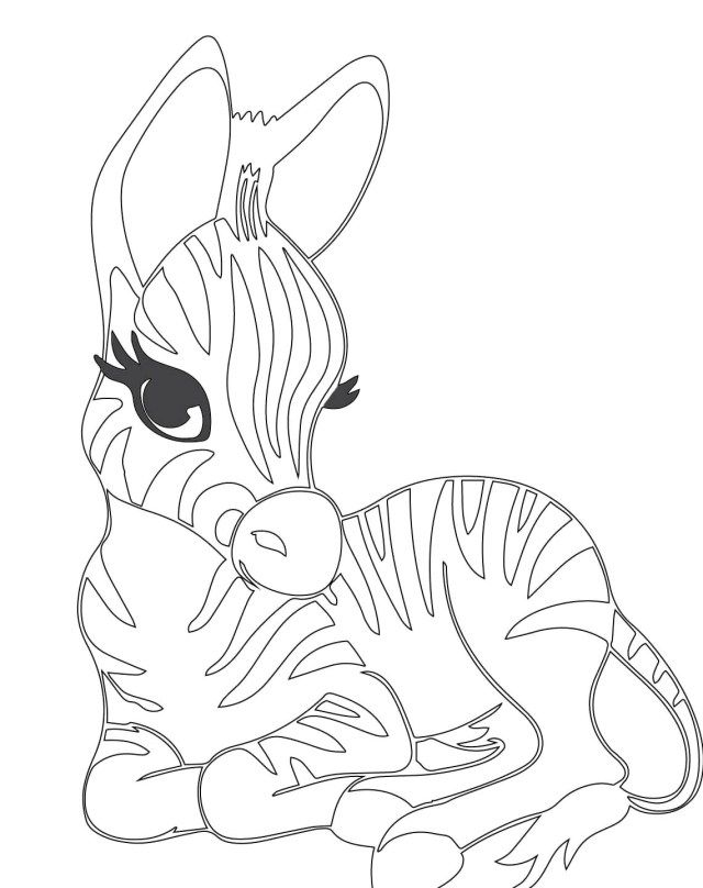 Coloring Pages For Your Kids Cute Baby Zebra Coloring Pages Only Coloring Pages Zebra Coloring Pages Cute Coloring Pages Animal Coloring Pages