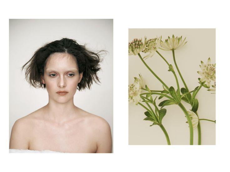 David Abrahams Fashion, Still Life & Beauty Photography Portfolio, david abrahams photographer