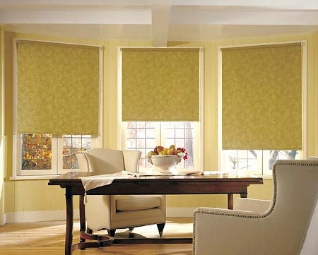 Roller shades   lots of colors  fabrics  textures and patterns for the  perfect match  Budget Blinds of Boise. 54 best Window Coverings    Blinds  Shutters  Cellular Shades