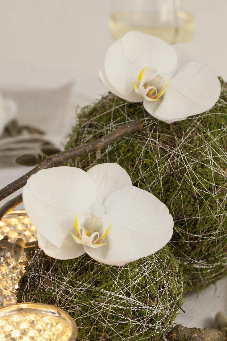Mosekugler med orkideer
