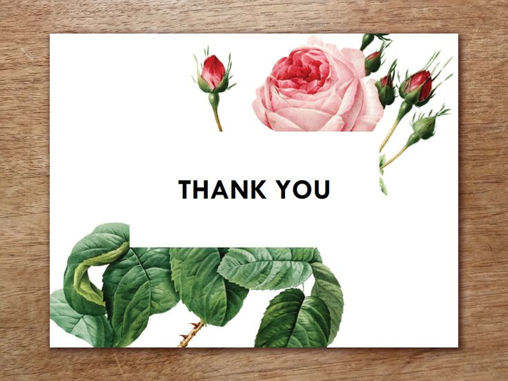 Best 25+ Thank you card template ideas on Pinterest Thank you - microsoft word thank you card template