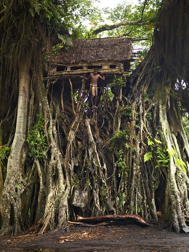 Boy and his caban at the top of a banyan tree in Yakel, Vanuatu by Eric Lafforgue, via Flickr