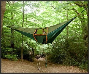 Hammock tent ~ my Daughter actually slept in one when we were camping several years ago, it even keeps the mosquitos out!