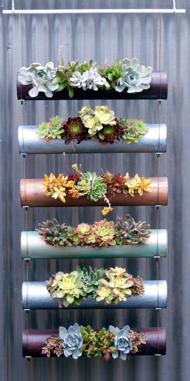 Vertical succulent planters...could also probably use PVC pipe lengths, capped on each end and holes cut on side....spray paint exterior in color of your choice.