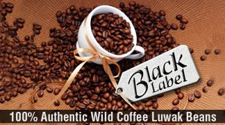 Kopi Luwak - One of the best tasting coffee in town. Cluwak has been a specialized dealer of 100% wild Kopi Luwak since 1989.