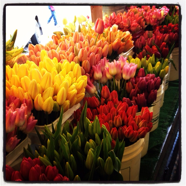 35 Best Pikes Market Flowers Images On Pinterest