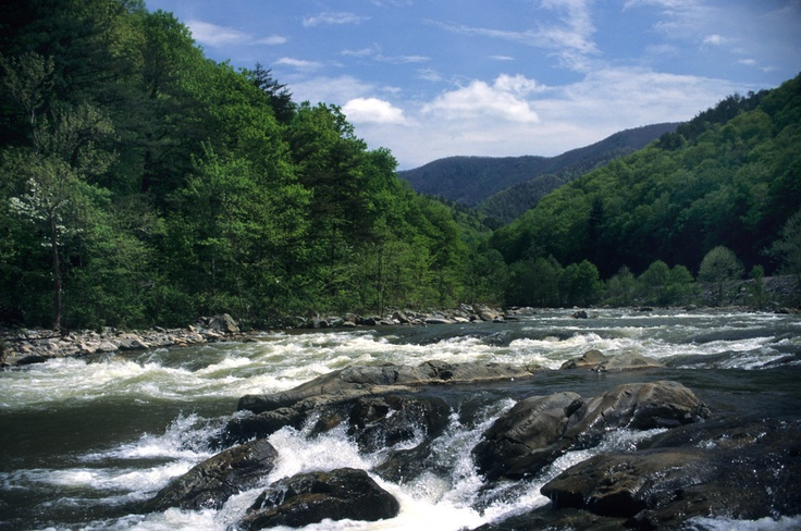 Adventurous visitors can enjoy camping and family-friendly whitewater rafting along the French Broad River in the North Carolina mountains.