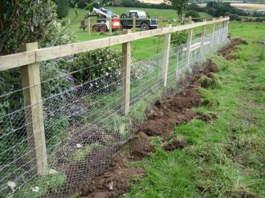 Vegetable Garden Fence Ideas 84 best fences and gates images on pinterest | fence ideas, garden