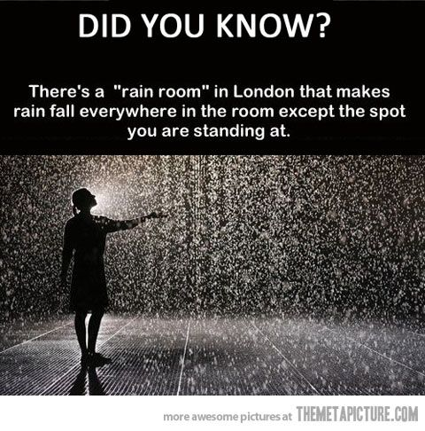Go to the Rain Room