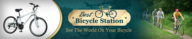 Electric Bicycle Reviews: Currie Technologies eZip Skyline Mens Electric Bicycle | Best Bicycle Station