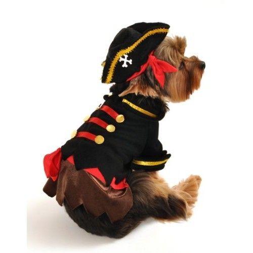 Dog Costume - Buccaneer Pirate