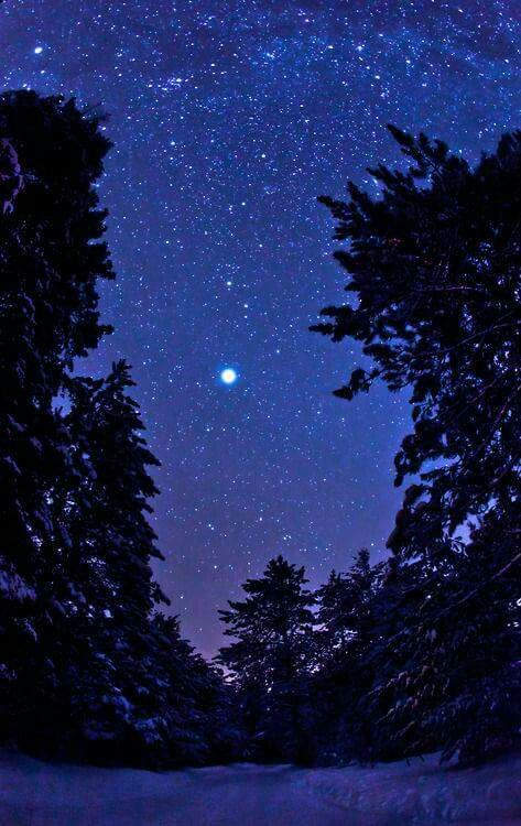 Blu scuro,  è il colore della notte  dove si concentrano  e si bloccano i nostri occhi,  le orecchie, le parole,  tutto quanto.   Banana Yoshimoto