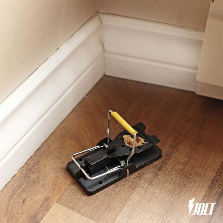 Mouse Traps (6 pack) | Mouse Exterminator | Mice Repellent