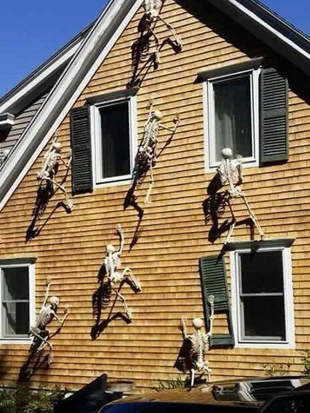 Wish Halloween Party Funny Halloween Decoration Skeleton The - funny halloween decorating ideas