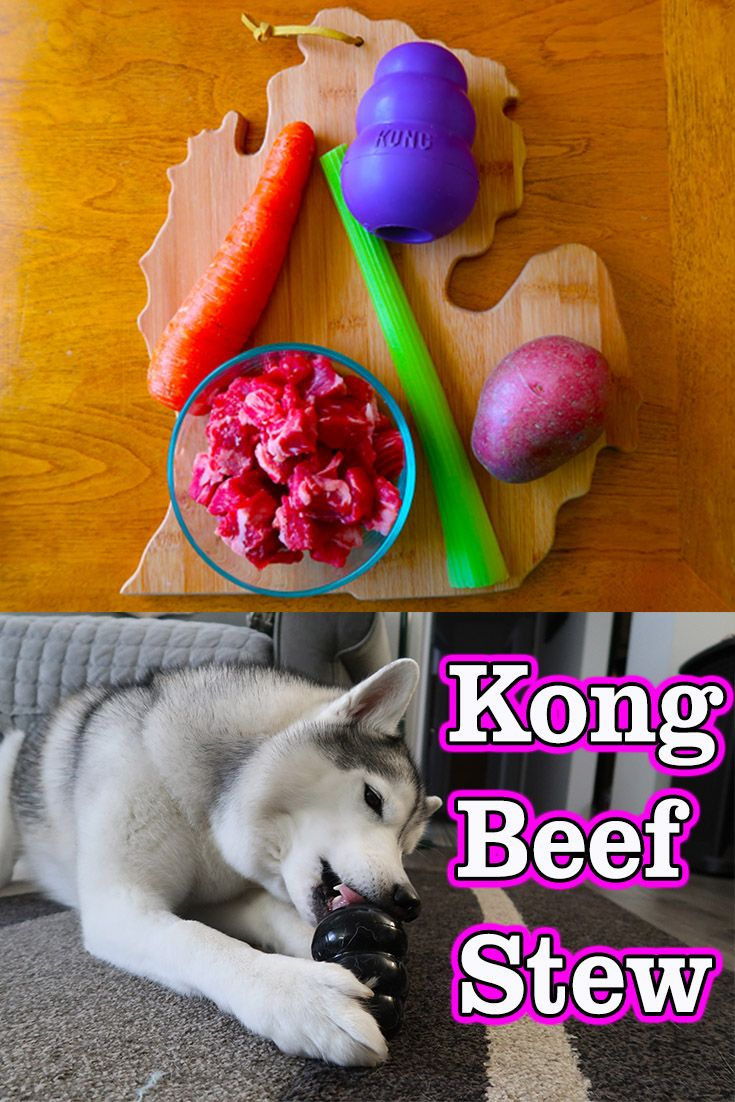 Diy Beef Stew Kong For Dogs Gone To The Snow Dogs Siberian