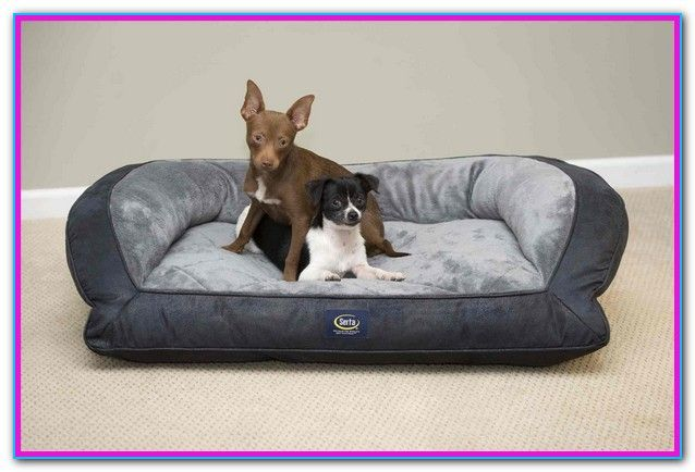 orthopedic memory foam couch pet bed