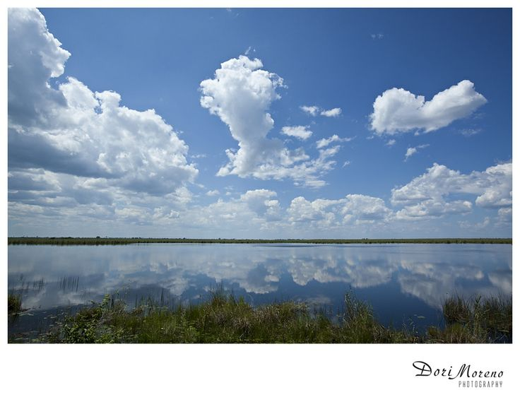 Reflections of sky on water, Botswana