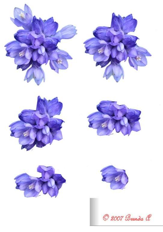 Flower 3d Sheets Slideshow by alottment1 | Photobucket