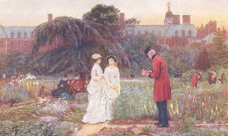 Old Men's Garden: