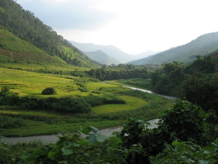 182)  Xishuangbanna is the home of the Dai people. The region sits at a lower altitude than most of Yunnan, and borders closely on tropical climate. http://en.wikipedia.org/wiki/Xishuangbanna_Dai_Autonomous_Prefecture
