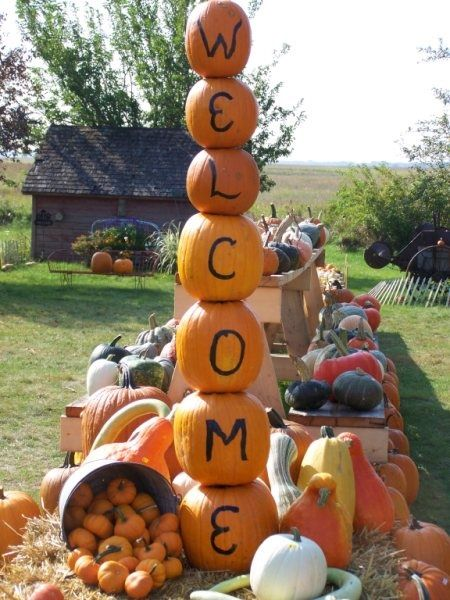 Hawk Valley Garden...my super pumpkin stacker...got a 15 foot tall fence post that I use for this display
