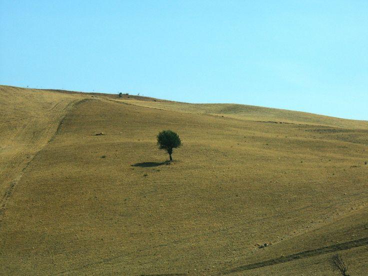 Entro terra siculo - Solitario