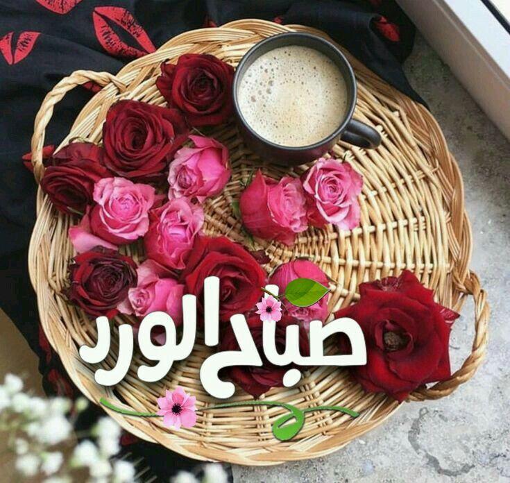 Pin By مشكاة الروض On صباح الخير Good Morning Nature Good Morning Arabic Morning Images